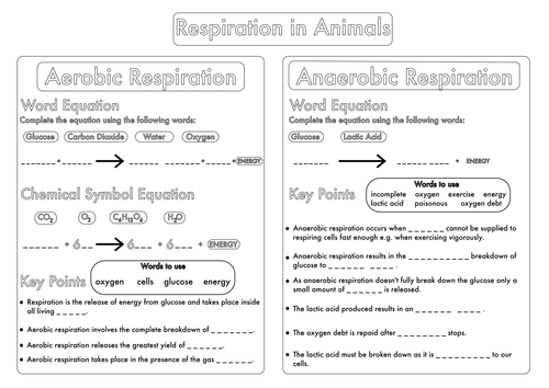 Bumper GCSE Biology Worksheet Pack by beckystoke - Teaching ...