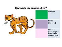 Tiger-tiger.pptx