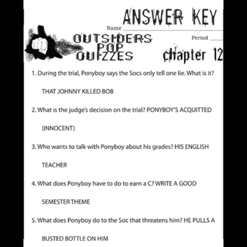Essay on the novel the outsiders