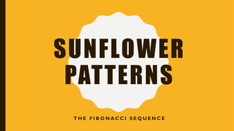 FBONACCI-SUNFLOWER-PATTERNS.pptx