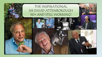 david-attenborough-updated-nov-16.pptx