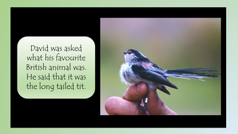 david-attenborough-simple-text-preview-slide-20.pdf