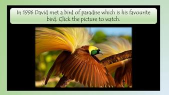 david-attenborough-simple-text-preview-slide-21.pdf