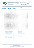River-Tweed-Plants-Wordsearch.pdf