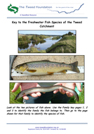 Key-to-the-Freshwater-Fish-Species-of-the-Tweed-Catchment.pdf