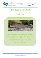 Fish-Species-Factsheet.pdf