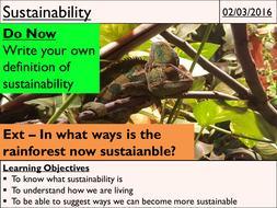 13---Sustainability.pptx