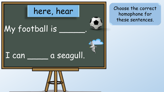 preview-images-year-2-homophones-25.pdf