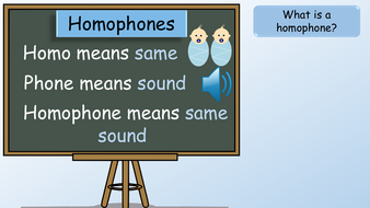 preview-images-year-2-homophones-2.pdf