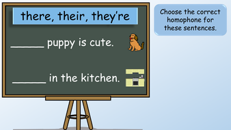 preview-images-year-2-homophones-24.pdf