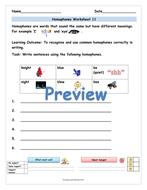 preview-master-year-2-homophones-worksheets-11.jpg