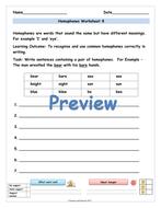 preview-master-year-2-homophones-worksheets-08.jpg