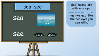 preview-images-year-2-homophones-7.pdf