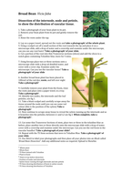 AQA A level Biology Required Practical 5: Broad Bean Plant Dissection