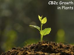 CB2c-Growth-in-Plants.pptx
