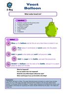 Yeast-Balloon-Investigation.pdf