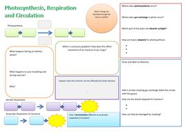 Photosynthesis-Resp-and-Circ-REVISION-SHEET.docx