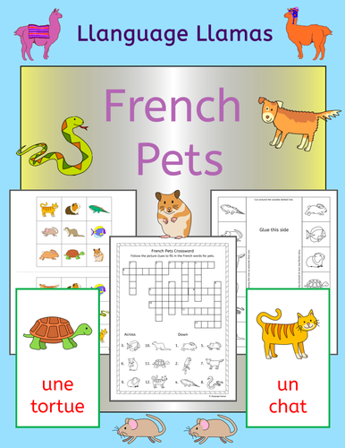 french pets activities worksheets and games by llanguagellamas teaching resources tes. Black Bedroom Furniture Sets. Home Design Ideas