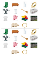 Lesson 1 Sorting pictures activity .docx