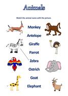 match-animals-and-names-worksheet.pdf