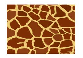 giraffe-zebra-elephant-skin-patterns.pdf