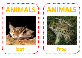 52-african-animal-flashcards.pdf