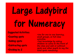 Large-ladybird-for-interactive-activities.pdf