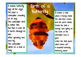 Poem-birth-of-a-butterfly.pdf