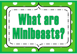 what-are-minibeasts.pdf