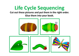 life-cycle-sequence.pdf