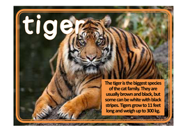 TIGER-FACTS-poster.pdf