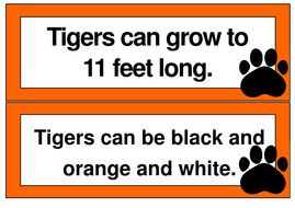 fact-cards.pdf