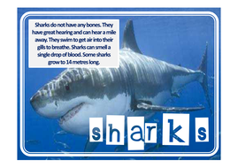 shark-fact-posters.pdf
