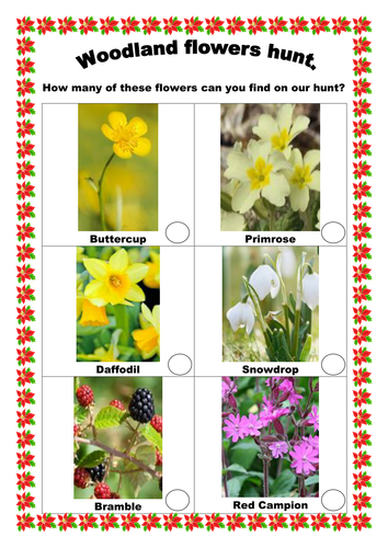 ks1 science woodland flower hunt activity by selinaj teaching resources tes. Black Bedroom Furniture Sets. Home Design Ideas
