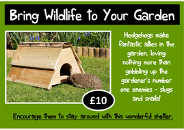 design-a-hedgehog-home.pdf