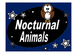x-nocturnal-animal-fact-posters.pdf