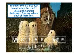 animal-homes.pdf