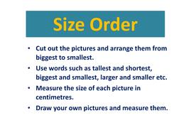 Size-Order-owls.pdf