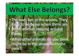 what-other-woodland-animals-did-you-see.pdf