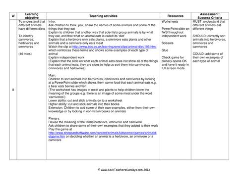 Carnivores and Herbivores KS1 Lesson Plan, Worksheets and Display ...
