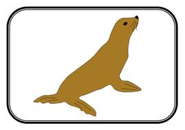 Animal-cards.pdf