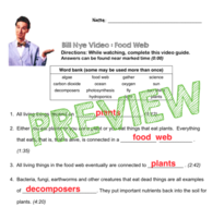 bill nye video questions food web w time stamp word bank and answer key by spransky. Black Bedroom Furniture Sets. Home Design Ideas