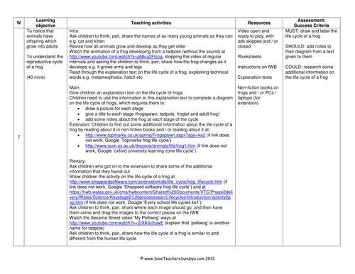 Preview A Text Worksheet : Frog life cycle ks lesson plan explanation text and