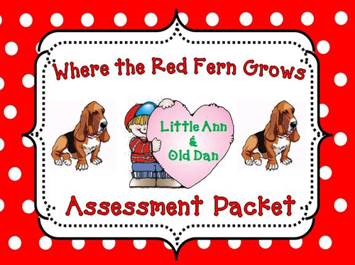 where the red fern grows assessment packet by theteacherteam teaching resources tes. Black Bedroom Furniture Sets. Home Design Ideas