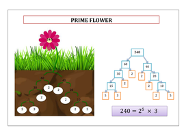 Prime-flower-output.docx