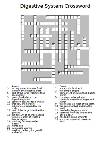 digestive system crossword puzzle by theteacherteam teaching resources tes. Black Bedroom Furniture Sets. Home Design Ideas