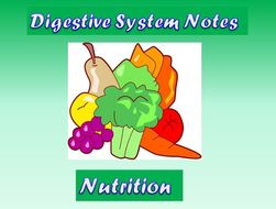 digestive system notes nutrition powerpoint presentation by
