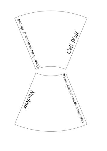 AQA Cell Biology Key Word Puzzles by ScienceTeacherXX