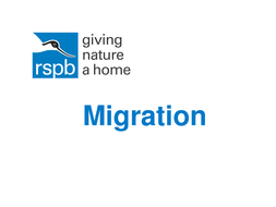Migration-powerpoint.ppt