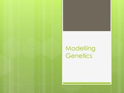 Modelling simple inheritance